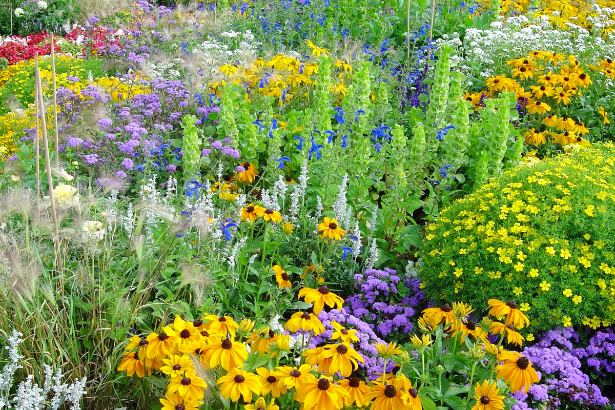The Power of Self-Seeding Landscapes